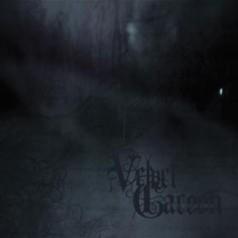 Velvet Cacoon - Atropine