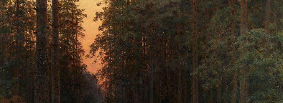 shishkin - sunset