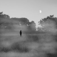 brouillard st